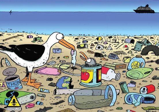 Une activité éco-responsable